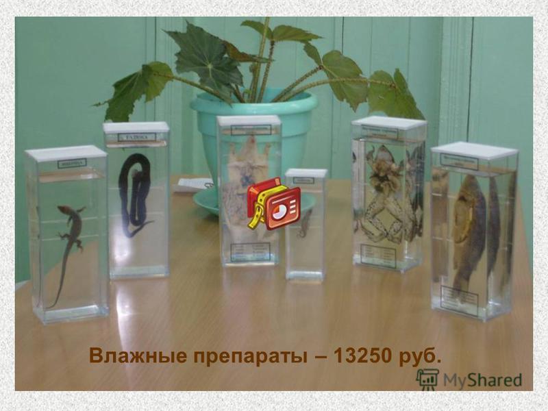 Влажные препараты – 13250 руб.