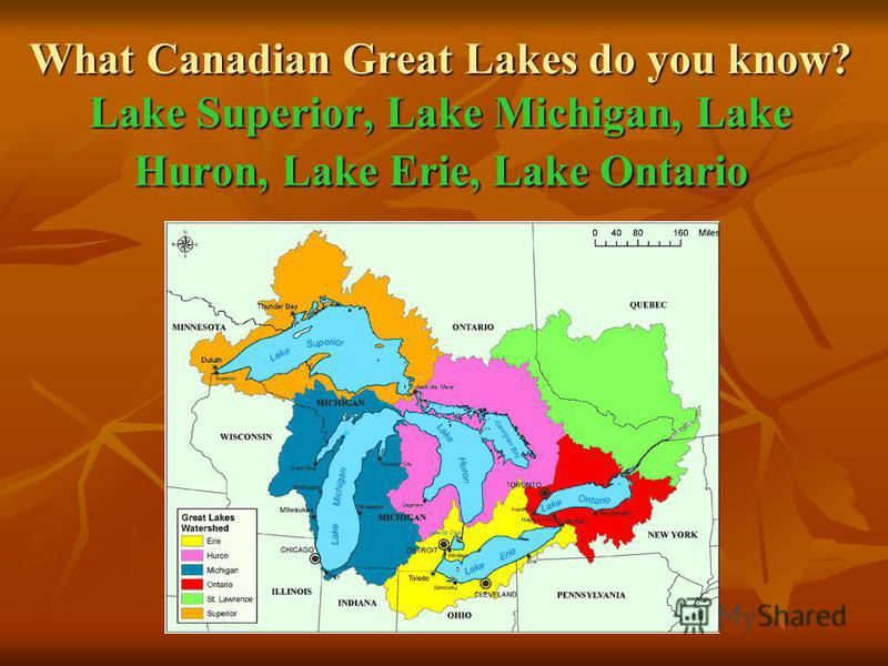 What Canadian Great Lakes do you know? Lake Superior, Lake Michigan, Lake Huron, Lake Erie, Lake Ontario