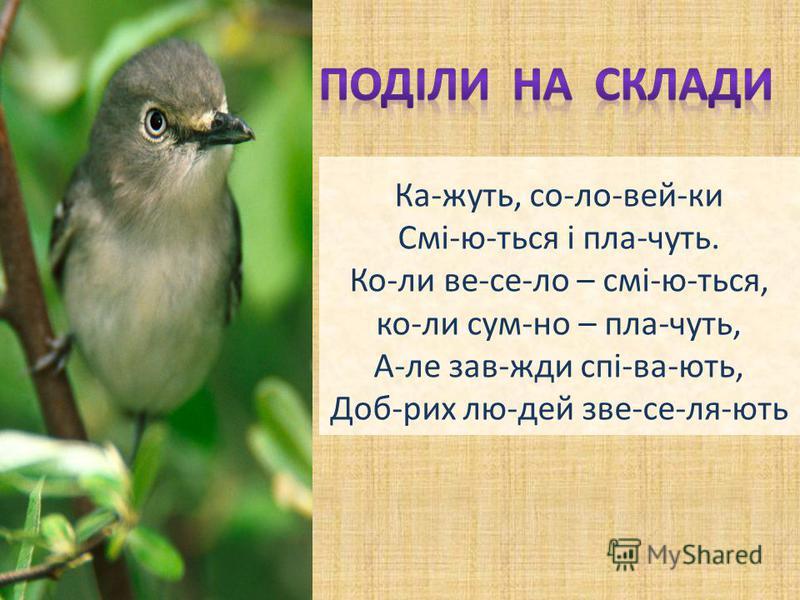 Кажуть, соловейки Сміються і плачуть. Коли весело – сміються, коли сумно – плачуть, Але завжди співають, Добрих людей звеселяють Ка-жуть, со-ло-вей-ки Смі-ю-ться і пла-чуть. Ко-ли ве-се-ло – смі-ю-ться, ко-ли сум-но – пла-чуть, А-ле зав-жди спі-ва-ют