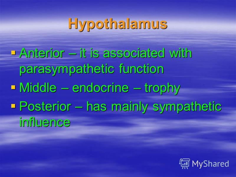 Hypothalamus Anterior – it is associated with parasympathetic function Anterior – it is associated with parasympathetic function Middle – endocrine – trophy Middle – endocrine – trophy Posterior – has mainly sympathetic influence Posterior – has main