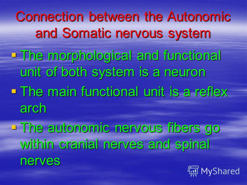 Connection between the Autonomic and Somatic nervous system The morphological and functional unit of both system is a neuron The morphological and functional unit of both system is a neuron The main functional unit is a reflex arch The main functiona