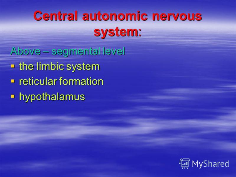 Central autonomic nervous system: Above – segmental level the limbic system the limbic system reticular formation reticular formation hypothalamus hypothalamus