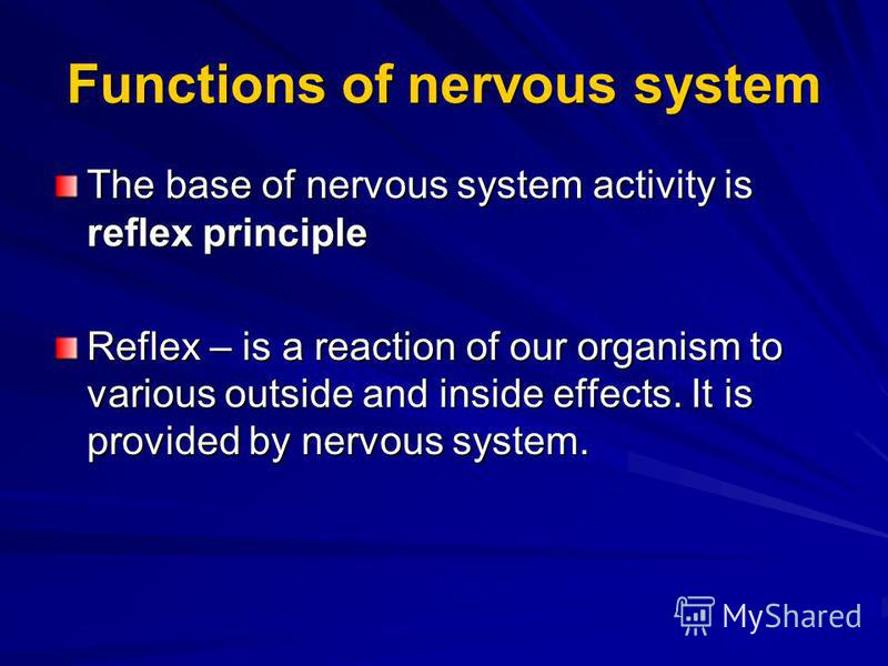 Functions of nervous system The base of nervous system activity is reflex principle Reflex – is a reaction of our organism to various outside and inside effects. It is provided by nervous system.