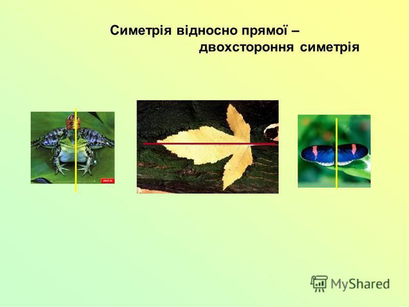 Симетрія відносно прямої – двохстороння симетрія