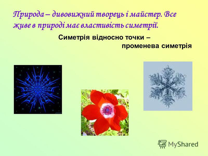 Симетрія відносно точки – променева симетрія Природа – дивовижний творець і майстер. Все живе в природі має властивість симетрії.