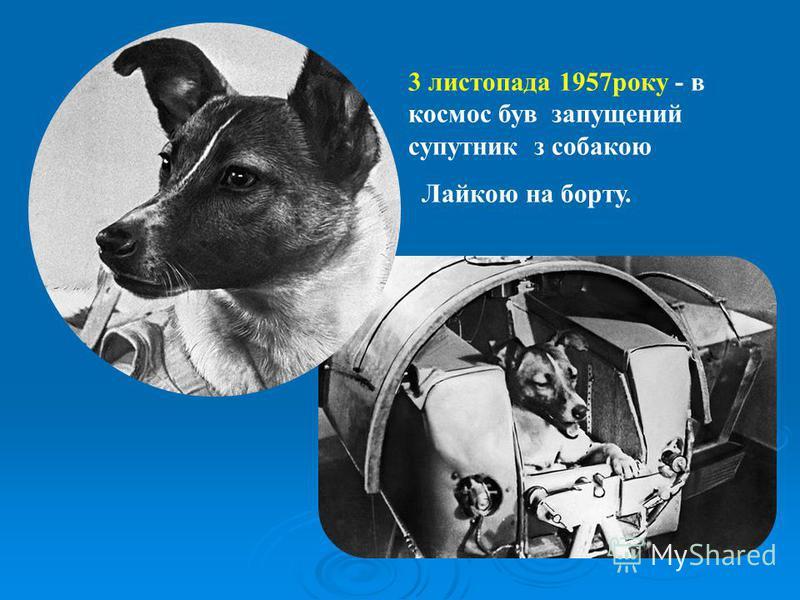 3 листопада 1957року - в космос був запущений супутник з собакою Лайкою на борту.