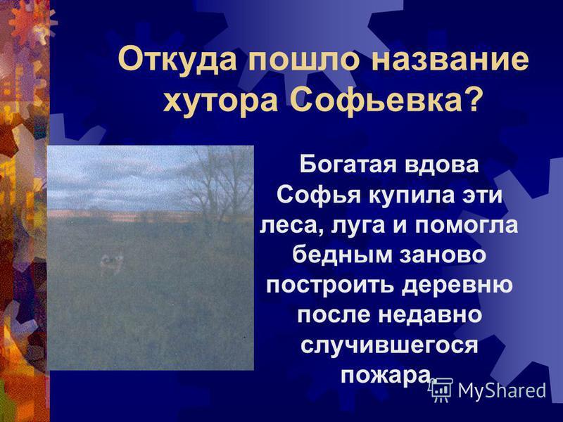 Откуда пошло название хутора Софьевка? Богатая вдова Софья купила эти леса, луга и помогла бедным заново построить деревню после недавно случившегося пожара.