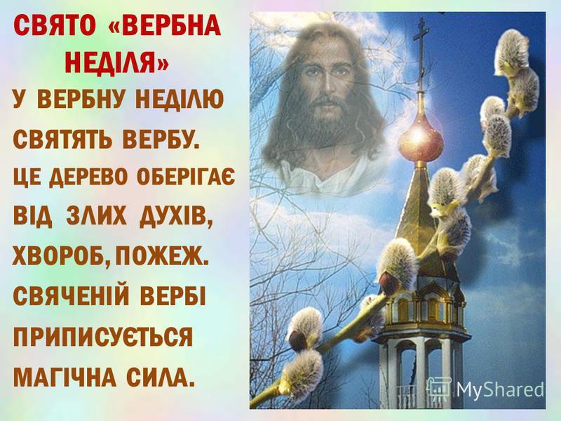 СВЯТО «ВЕРБНА НЕДІЛЯ» У ВЕРБНУ НЕДІЛЮ СВЯТЯТЬ ВЕРБУ. ЦЕ ДЕРЕВО ОБЕРІГАЄ ВІД ЗЛИХ ДУХІВ, ХВОРОБ, ПОЖЕЖ. СВЯЧЕНІЙ ВЕРБІ ПРИПИСУЄТЬСЯ МАГІЧНА СИЛА.