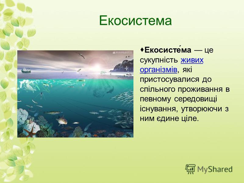 Екосистема Екосисте́ма це сукупність живих організмів, які пристосувалися до спільного проживання в певному середовищі існування, утворюючи з ним єдине ціле.живих організмів