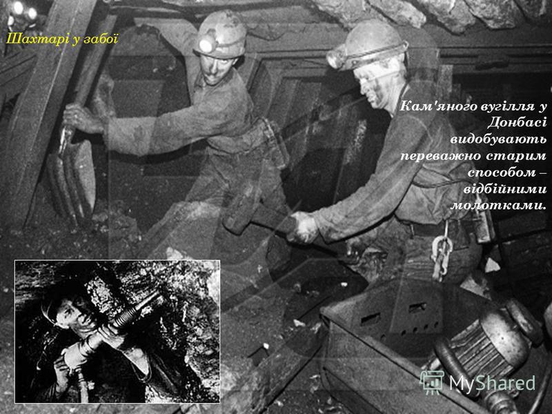 Шахтар на шахті Краснолиманська Потужність шарів кам'яного вугілля у Донбасі незначна: від 50 см до 2 м.