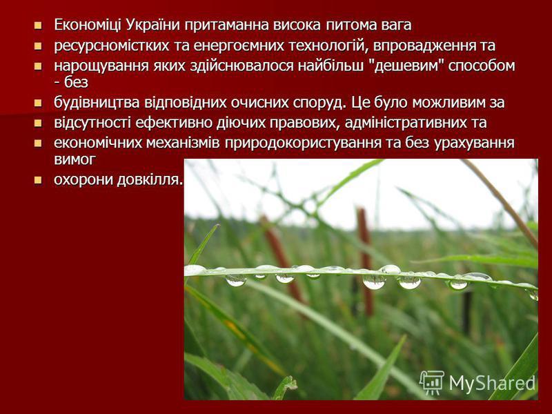 Економіці України притаманна висока питома вага Економіці України притаманна висока питома вага ресурсномістких та енергоємних технологій, впровадження та ресурсномістких та енергоємних технологій, впровадження та нарощування яких здійснювалося найбі
