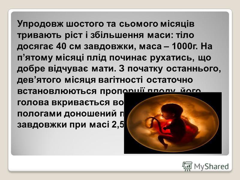 Упродовж шостого та сьомого місяців тривають ріст і збільшення маси: тіло досягає 40 см завдовжки, маса – 1000г. На пятому місяці плід починає рухатись, що добре відчуває мати. З початку останнього, девятого місяця вагітності остаточно встановлюються