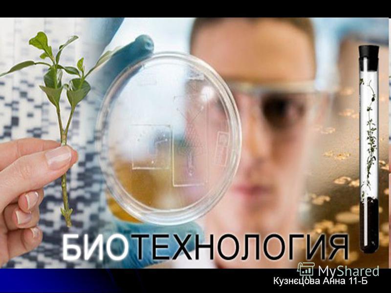 Біотехнологія Кузнєцова Анна 11-Б