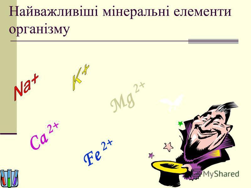 Найважливіші мінеральні елементи організму Ca 2+ Fe 2+ Mg 2+