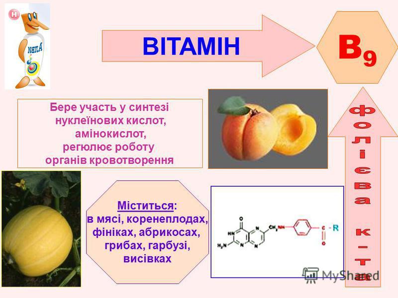 ВІТАМІН B9B9 Бере участь у синтезі нуклеїнових кислот, амінокислот, регюлює роботу органів кровотворення Міститься: в мясі, коренеплодах, фініках, абрикосах, грибах, гарбузі, висівках