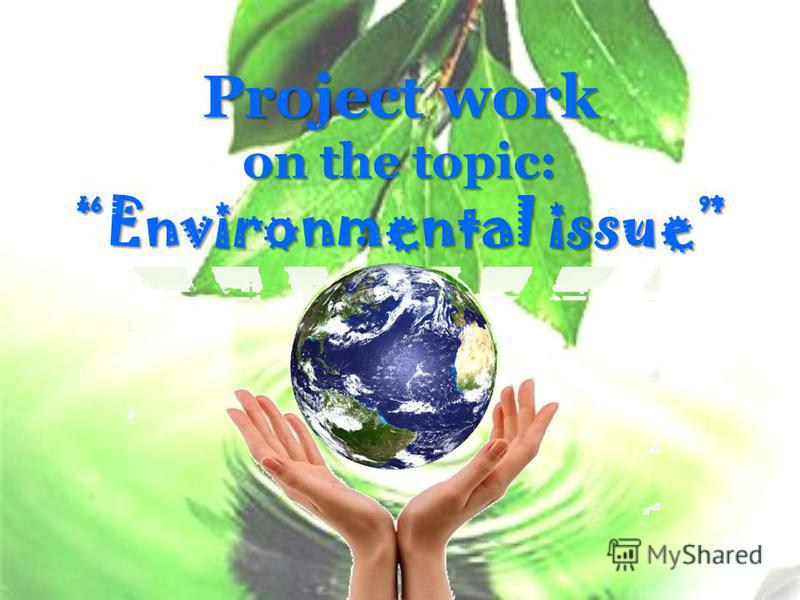 Project work on the topic: Environmental issue