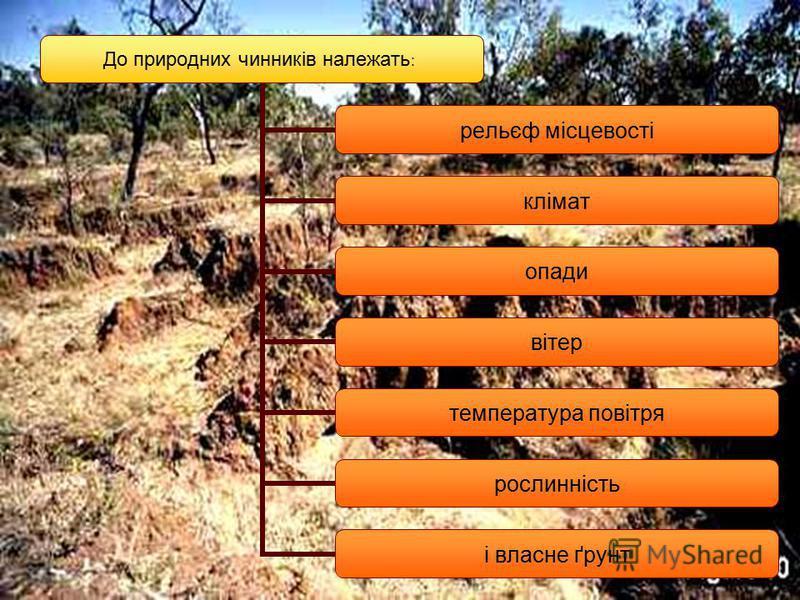До природних чинників належать: рельєф місцевості клімат опади вітер температура повітря рослинність і власне ґрунт