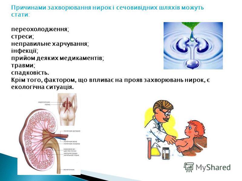 Причинами захворювання нирок і сечовивідних шляхів можуть стати: переохолодження; стреси; неправильне харчування; інфекції; прийом деяких медикаментів; травми; спадковість. Крім того, фактором, що впливає на прояв захворювань нирок, є екологічна ситу