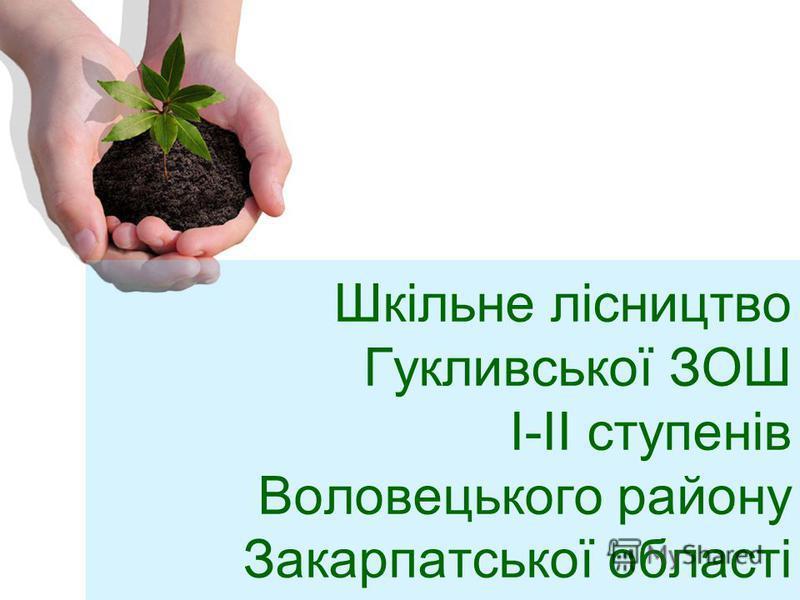 Шкільне лісництво Гукливської ЗОШ I-II ступенів Воловецького району Закарпатської області