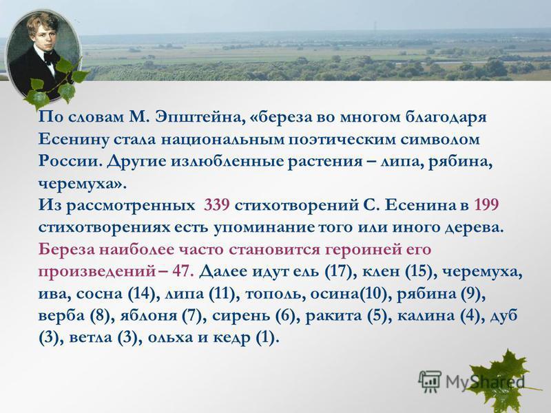 По словам М. Эпштейна, «береза во многом благодаря Есенину стала национальным поэтическим символом России. Другие излюбленные растения – липа, рябина, черемуха». Из рассмотренных 339 стихотворений С. Есенина в 199 стихотворениях есть упоминание того