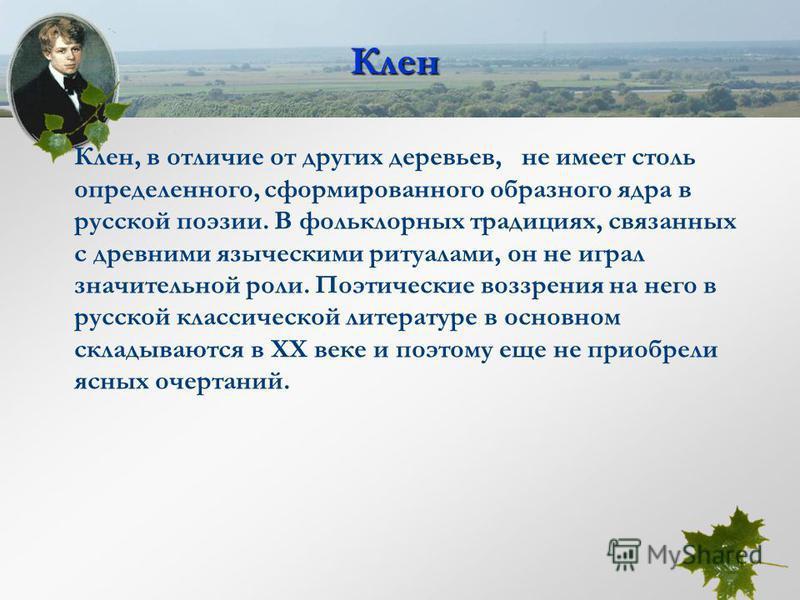 Клен Клен, в отличие от других деревьев, не имеет столь определенного, сформированного образного ядра в русской поэзии. В фольклорных традициях, связанных с древними языческими ритуалами, он не играл значительной роли. Поэтические воззрения на него в