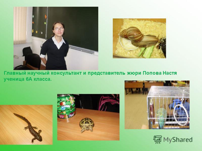 Главный научный консультант и представитель жюри Попова Настя ученица 6А класса.
