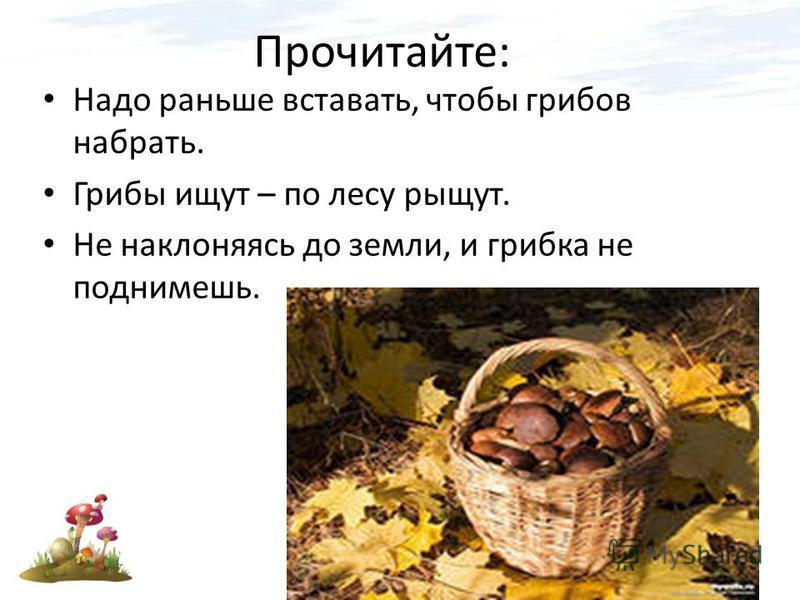 Прочитайте: Надо раньше вставать, чтобы грибов набрать. Грибы ищут – по лесу рыщут. Не наклоняясь до земли, и грибка не поднимешь.