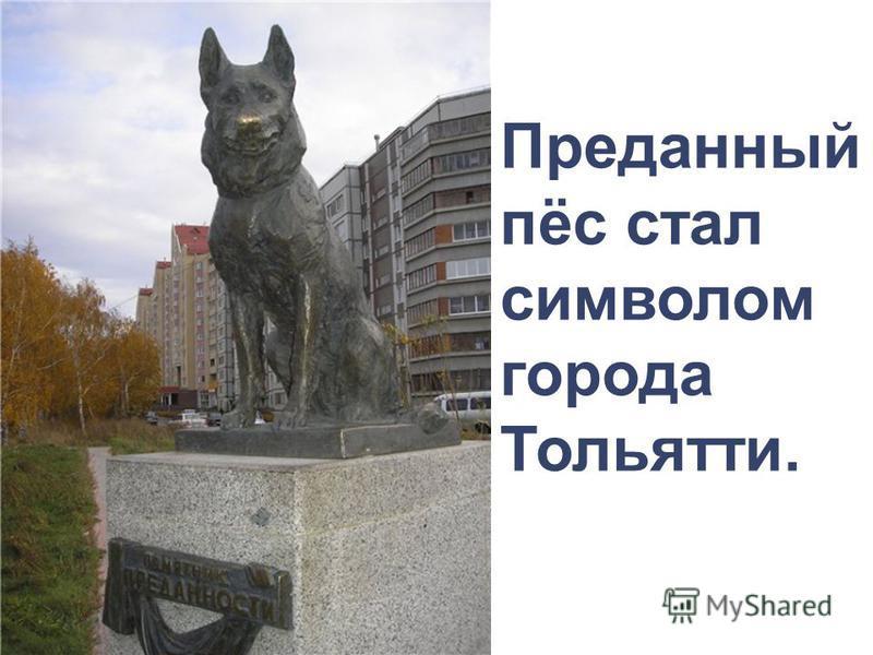 Преданный пёс стал символом города Тольятти.