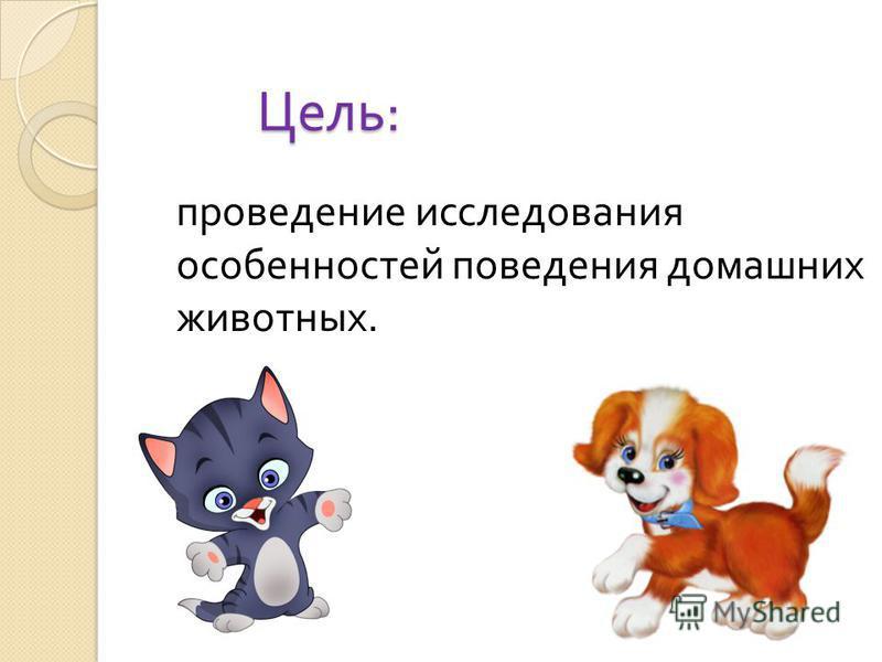 Цель : проведение исследования особенностей поведения домашних животных.
