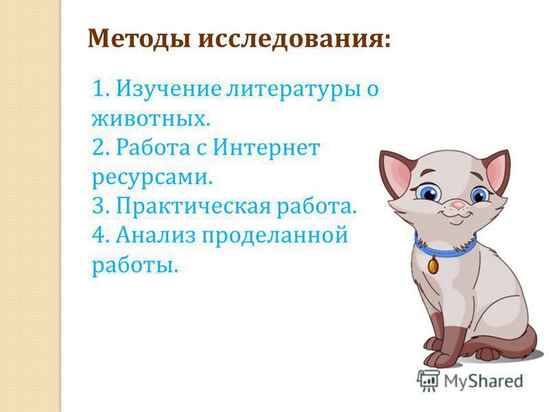 Методы исследования: 1. Изучение литературы о животных. 2. Работа с Интернет ресурсами. 3. Практическая работа. 4. Анализ проделанной работы.