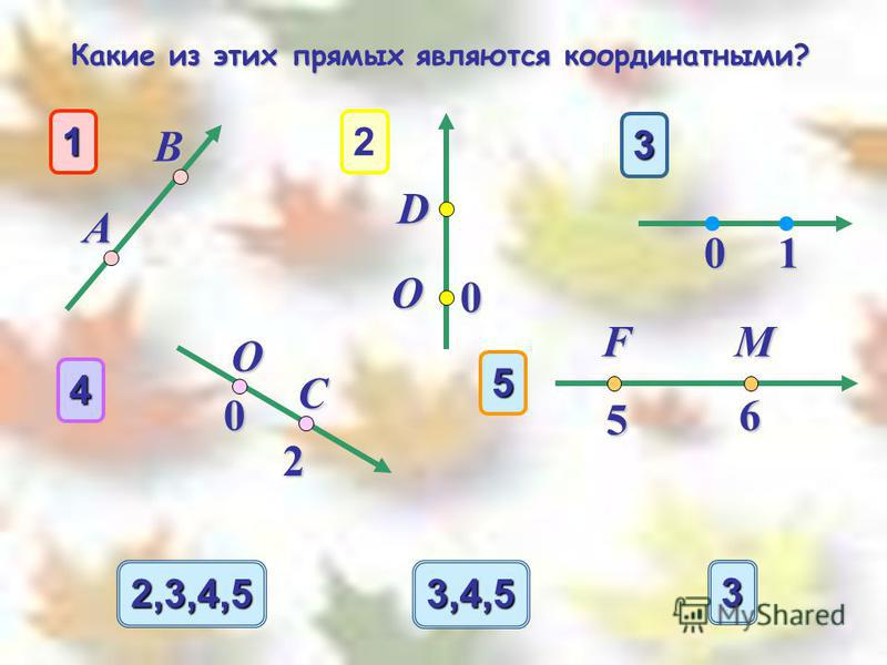 3333 2,3,4,5 3,4,5 1 А В 3 10 O 4 0 C 2 2 D O 0 5 5 6 FM Какие из этих прямых являются координатными? Какие из этих прямых являются координатными?