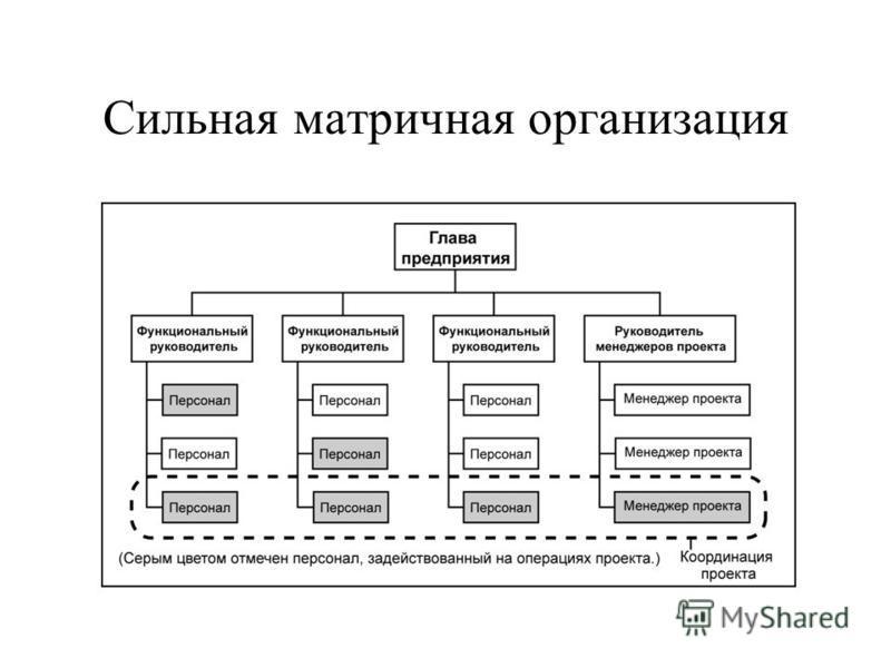 Сбалансированная матричная организация
