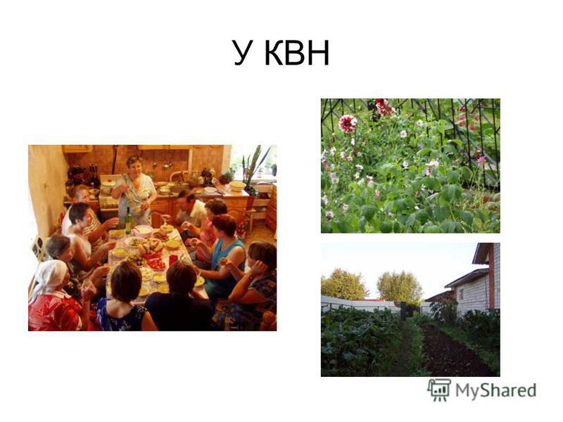 У КВН