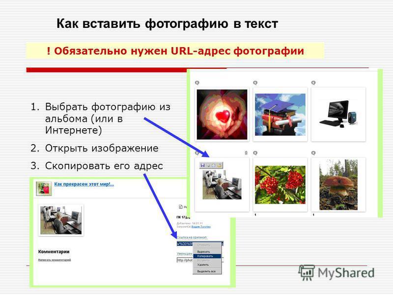 Как вставить фотографию в текст ! Обязательно нужен URL-адрес фотографии 1. Выбрать фотографию из альбома (или в Интернете) 2. Открыть изображение 3. Скопировать его адрес