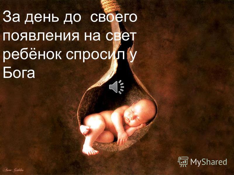 За день до своего появления на свет ребёнок спросил у Бога