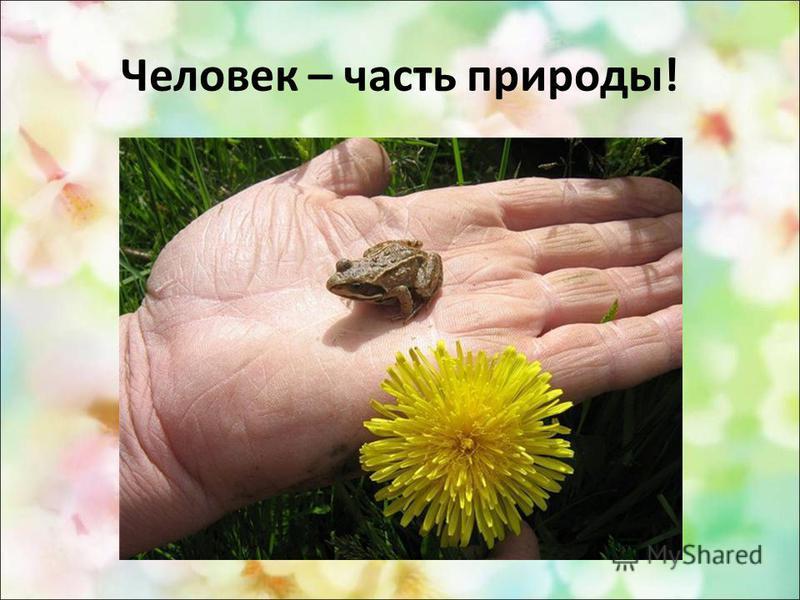 Человек – часть природы!