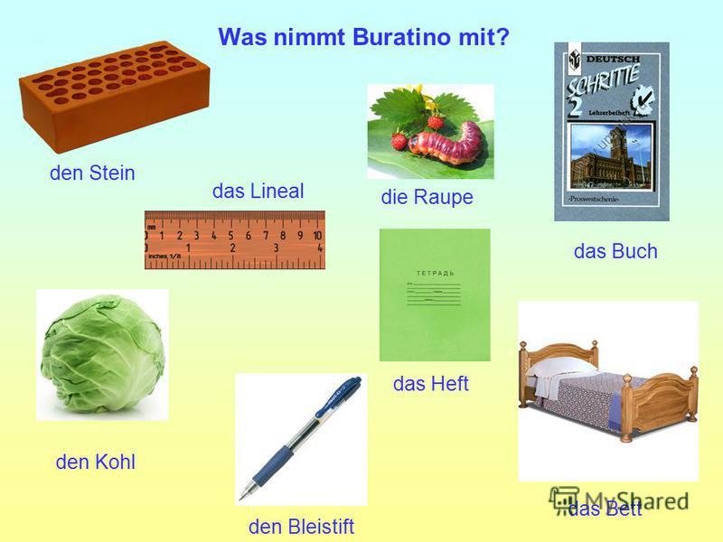 das Buch das Bett das Lineal die Raupe das Heft den Stein den Bleistift den Kohl Was nimmt Buratino mit?