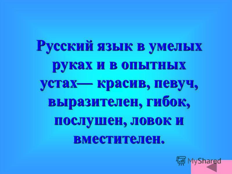 Что русский язык один из богатейших языков в мире, в этом нет никакого сомнения