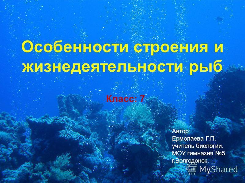 Особенности строения и жизнедеятельности рыб Автор: Ермолаева Г.П. учитель биологии. МОУ гимназия 5 г.Волгодонск. Класс: 7
