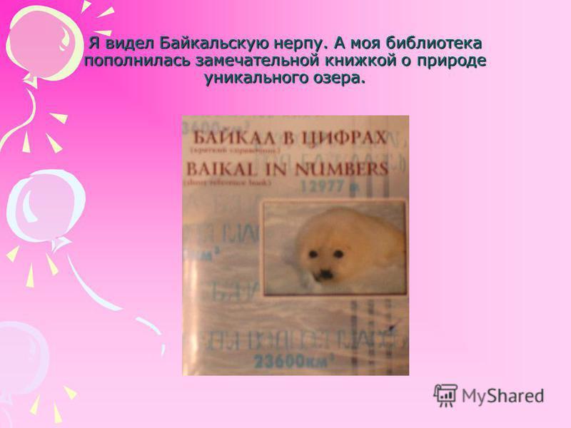 Я видел Байкальскую нерпу. А моя библиотека пополнилась замечательной книжкой о природе уникального озера.