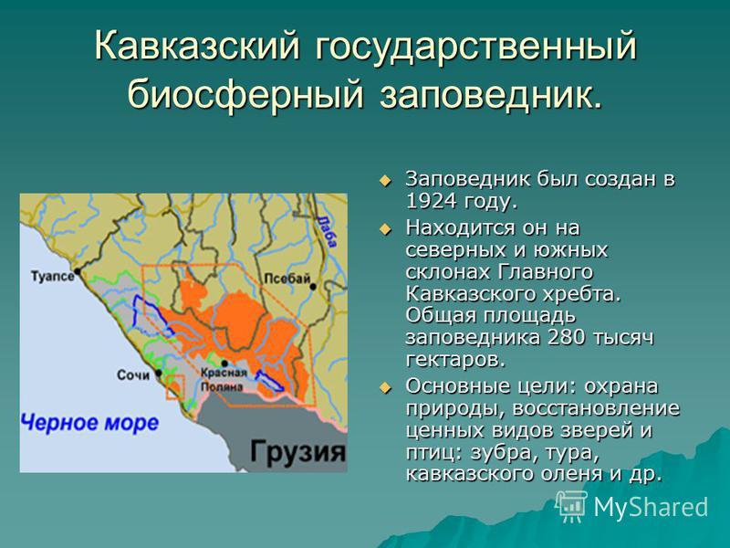 Кавказский государственный биосферный заповедник. Заповедник был создан в 1924 году. Заповедник был создан в 1924 году. Находится он на северных и южных склонах Главного Кавказского хребта. Общая площадь заповедника 280 тысяч гектаров. Находится он н