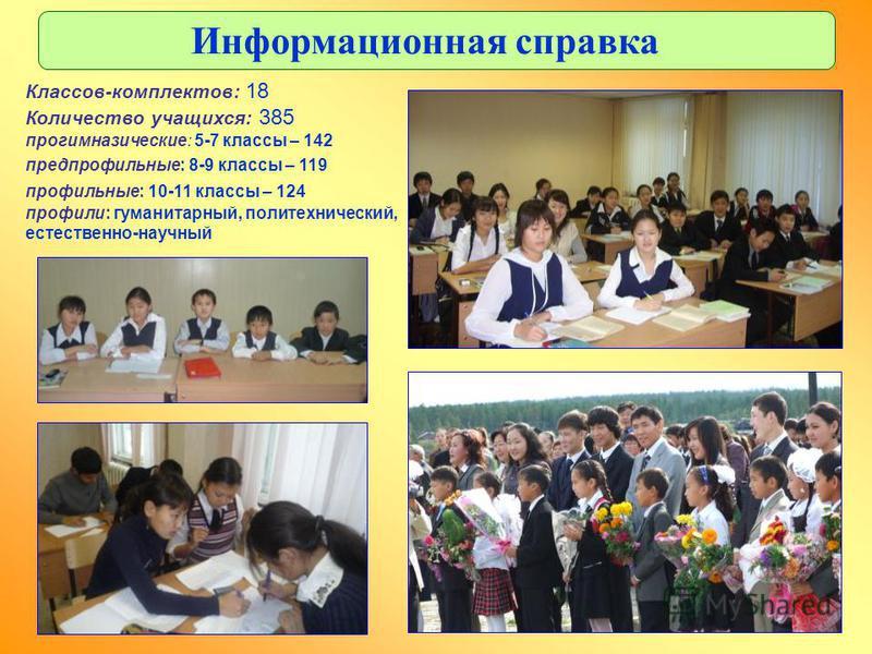 Классов-комплектов: 18 Количество учащихся: 385 про гимназические: 5-7 классы – 142 предпрофильные: 8-9 классы – 119 профильные: 10-11 классы – 124 профили: гуманитарный, политехнический, естественно-научный Информационная справка