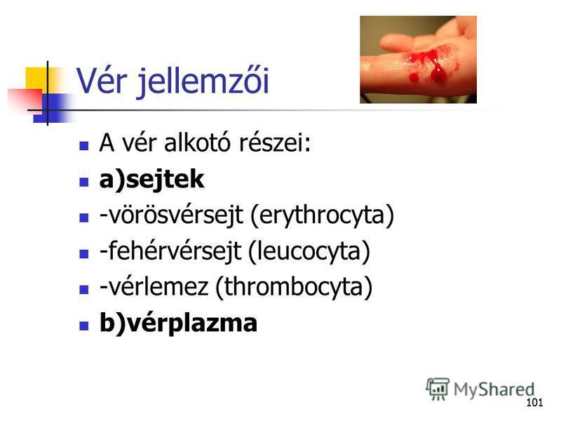 101 Vér jellemzői A vér alkotó részei: a)sejtek -vörösvérsejt (erythrocyta) -fehérvérsejt (leucocyta) -vérlemez (thrombocyta) b)vérplazma