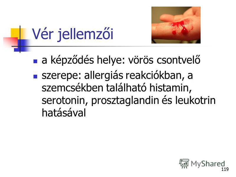 119 Vér jellemzői a képződés helye: vörös csontvelő szerepe: allergiás reakciókban, a szemcsékben található histamin, serotonin, prosztaglandin és leukotrin hatásával