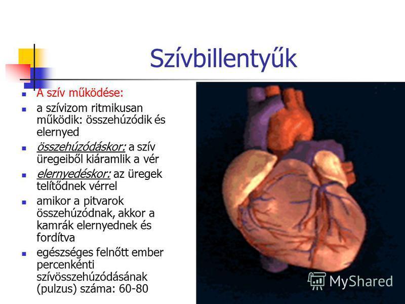 27 Szívbillentyűk A szív működése: a szívizom ritmikusan működik: összehúzódik és elernyed összehúzódáskor: a szív üregeiből kiáramlik a vér elernyedéskor: az üregek telítődnek vérrel amikor a pitvarok összehúzódnak, akkor a kamrák elernyednek és for