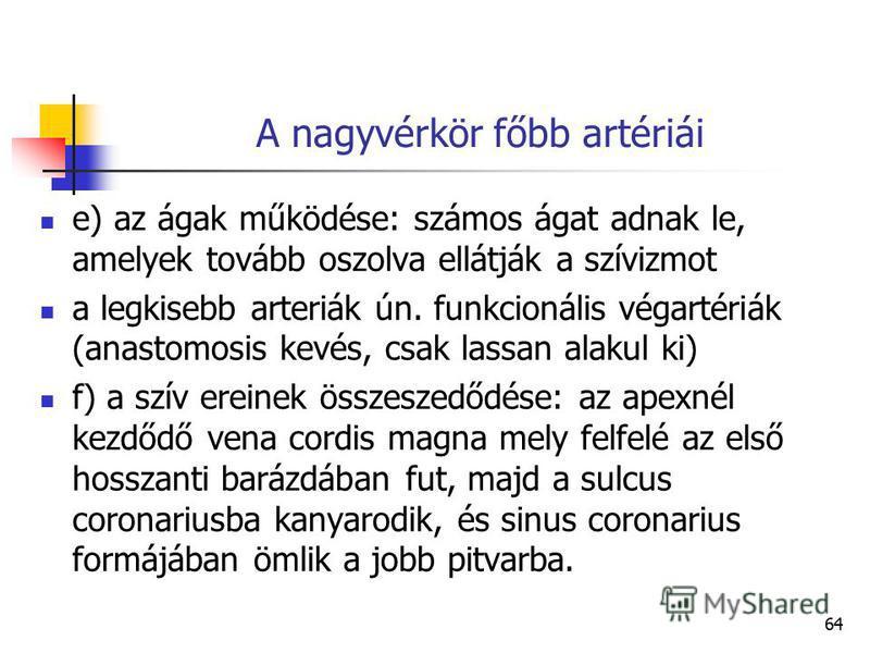 64 A nagyvérkör főbb artériái e) az ágak működése: számos ágat adnak le, amelyek tovább oszolva ellátják a szívizmot a legkisebb arteriák ún. funkcionális végartériák (anastomosis kevés, csak lassan alakul ki) f) a szív ereinek összeszedődése: az ape