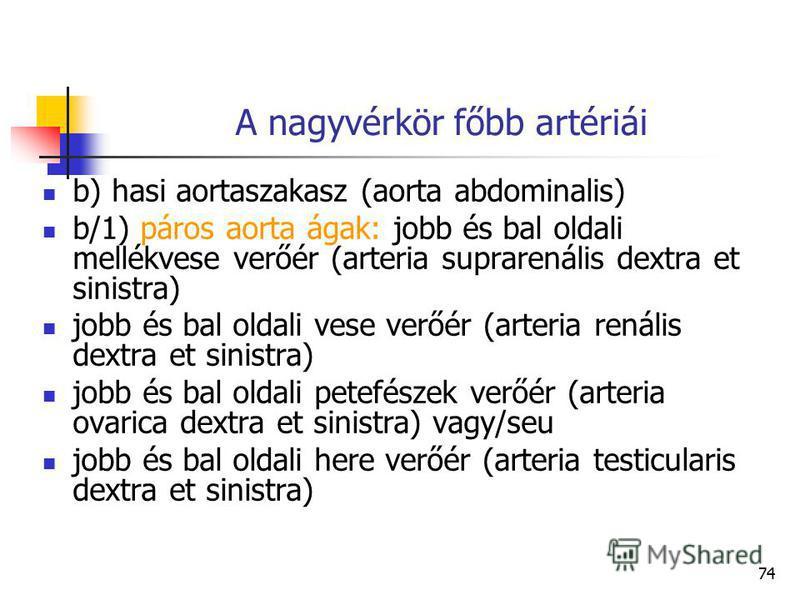 74 A nagyvérkör főbb artériái b) hasi aortaszakasz (aorta abdominalis) b/1) páros aorta ágak: jobb és bal oldali mellékvese verőér (arteria suprarenális dextra et sinistra) jobb és bal oldali vese verőér (arteria renális dextra et sinistra) jobb és b