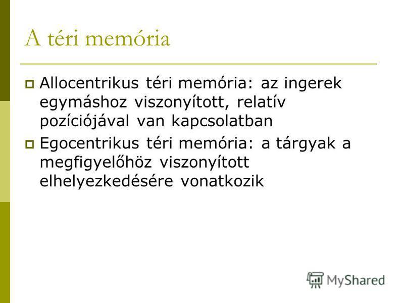 A téri memória Allocentrikus téri memória: az ingerek egymáshoz viszonyított, relatív pozíciójával van kapcsolatban Egocentrikus téri memória: a tárgyak a megfigyelőhöz viszonyított elhelyezkedésére vonatkozik