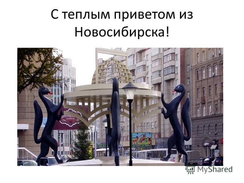 C теплым приветом из Новосибирска!