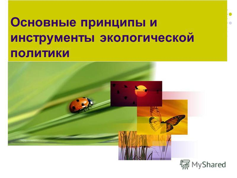 1 Основные принципы и инструменты экологической политики